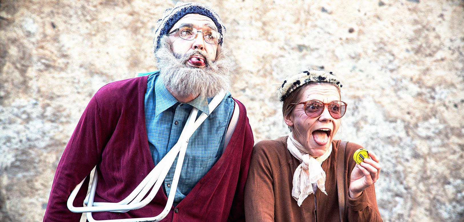 compagnie théâtre spectacles vivants - Mr et Mme Poiseau